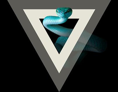 Landing page Snake.Land
