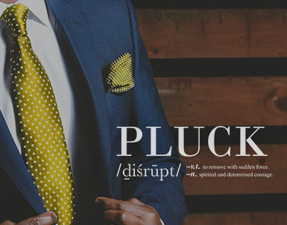 Brand & Website – PLUCK disrupt