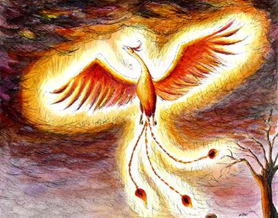 Phoenix on the rise