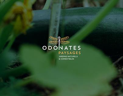 Odonates Paysages // Identité