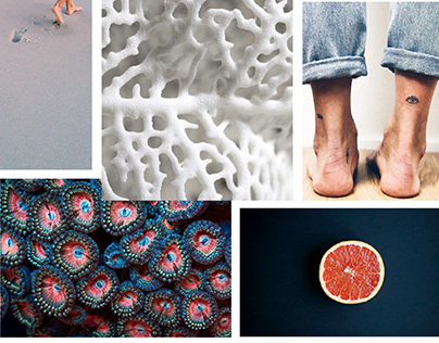 A Variety of Moodboards