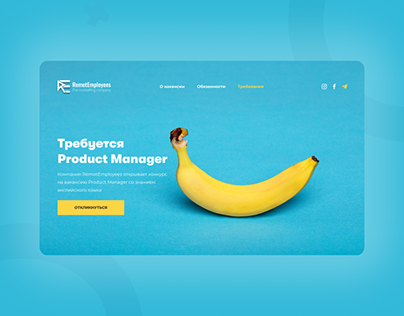 Product Manager Page Vacancy