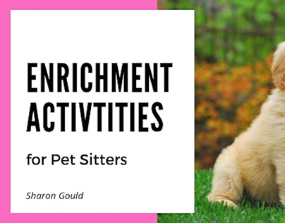 Enrichment Activities for Pets | Sharon Gould