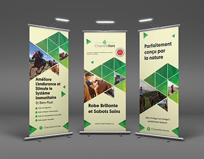 Corporate Work 2018 | Flyers, Brochure, Branding