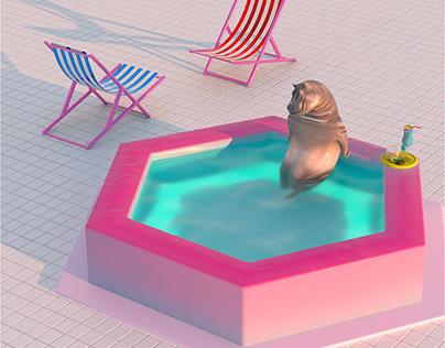 Quarantine hippo in pool