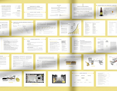 Ginger Beer - Business Plan Layout