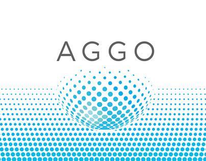 Argentinean-German Geodetic Observatory (AGGO)