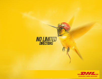 Why DHL?
