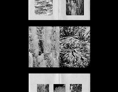 Fanzine - Serie Fotográfica