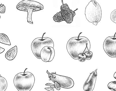 "Illustrations for ""Maison Bacarelli"""