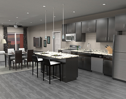 Kitchen Renderings - New Apartment Kitchens
