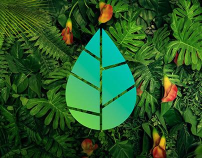 Amazonia Beverages