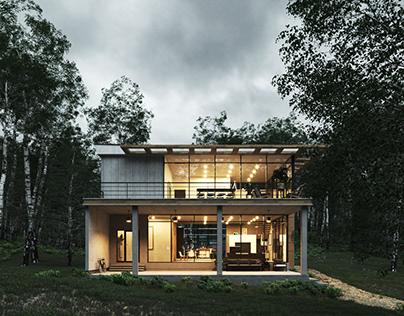 Country Home V2