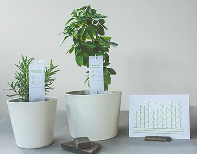 Jardins en boîte Identity & Branding