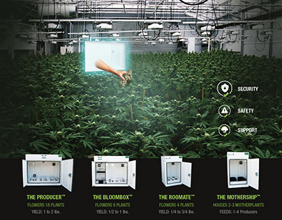 BC Grow Box