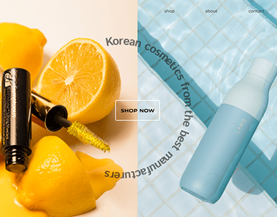 'Panda' - Korean cosmetics. Web design
