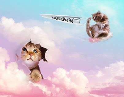 Meow Photoshop