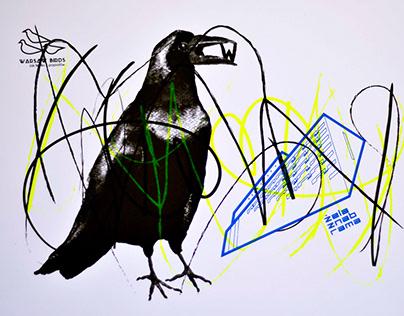 Warsaw Birds