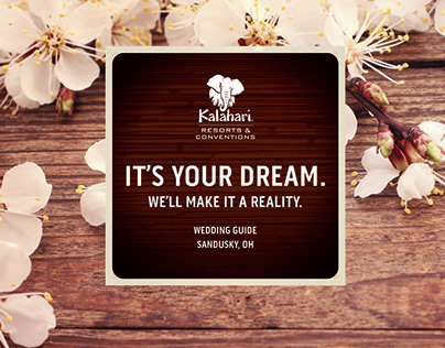 Kalahari Resorts Dream Wedding Guide