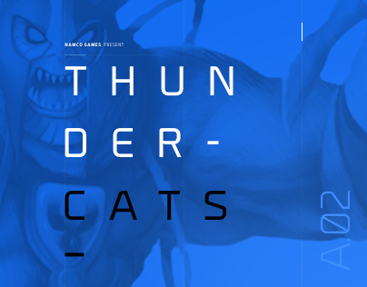 Thundercats NintendoDS