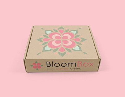 BloomBox - Brand Development Project