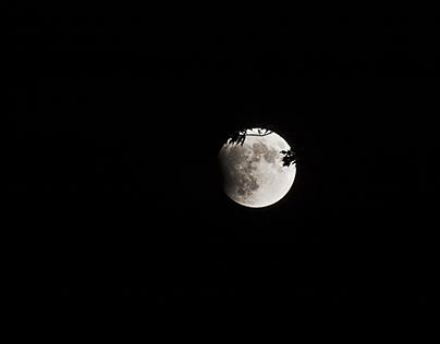 Lunar Eclipse Starting