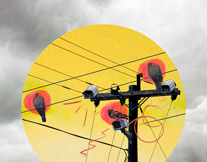 Pigeons control - Digital Collage - Illustration
