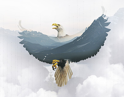Double exposure EAGLE