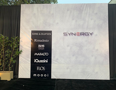Synergy (Story launch)