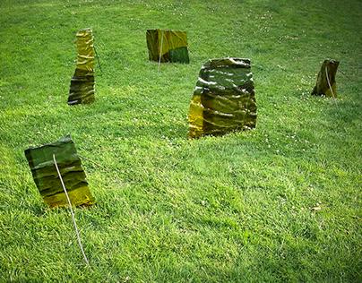 Cortex, 2005 (installation)