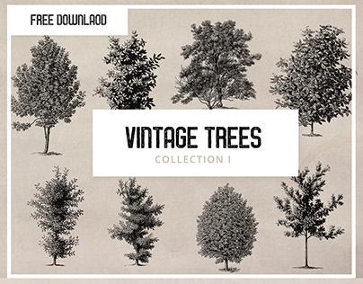 Free - Vintage Tree Illustrations
