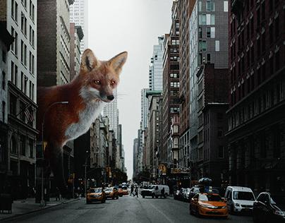 city landscape photomontage