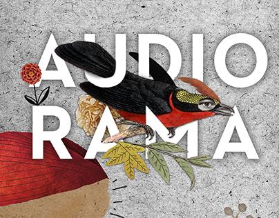 Audiorama (music posters)