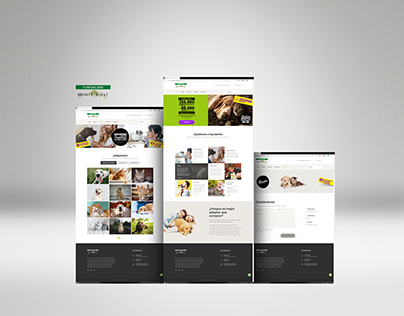 Diseño Web Fundación Monte Sinaí