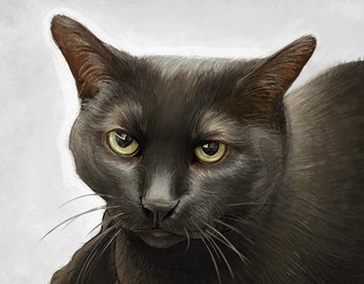 Custom digital pet portrait of Winona