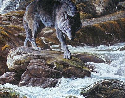 Wildlife Art by Alan M Hunt
