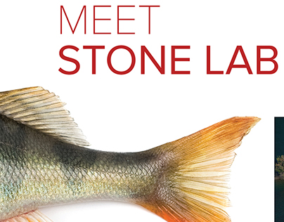 2017 Stone Laboratory Campaign