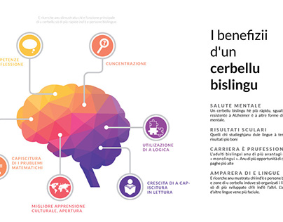 Infographics - Benefits of a bilingual brain