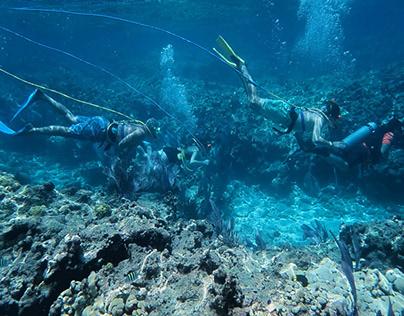 Scuba Diving in Key West, FL