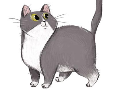 Kitty ❤️