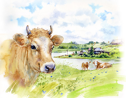 Illustrations for dairy products
