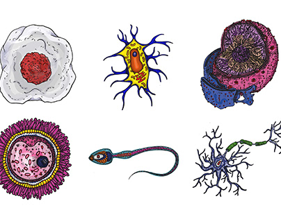 Human cell micro-organism spread Illustration