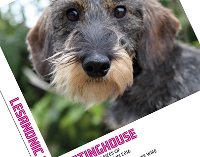 Irish Canine Press advertisements