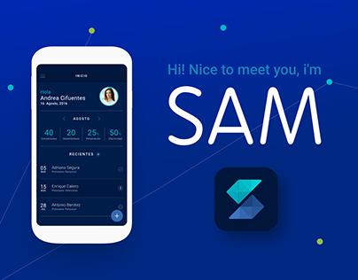 SAM Loan simulator.