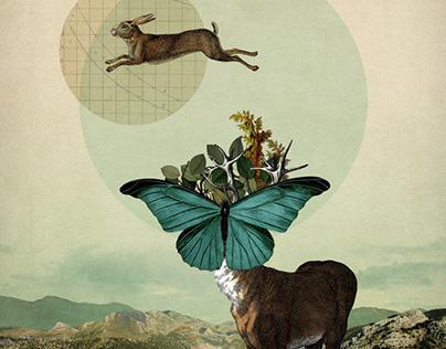 Jump Collage