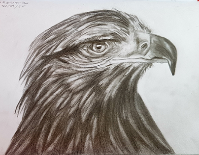Eagle project
