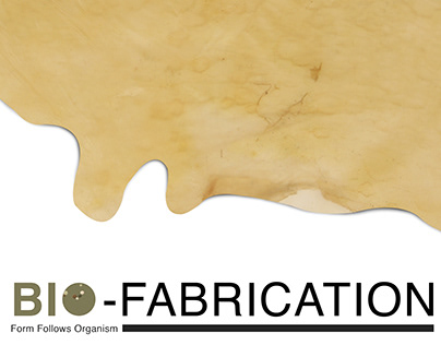 Bio-Fabrication I Thesis I CCS