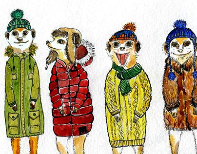 Meerkats wintering