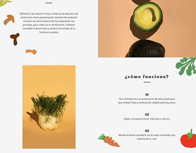 Web Design - El bolsón saludable