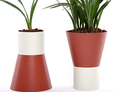 Flower Pots Accompanying Growth of Flowers